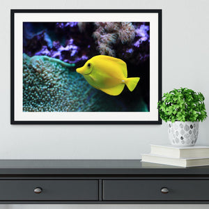 The yellow fish Framed Print - Canvas Art Rocks - 1