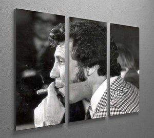 Tom Jones with cigar 3 Split Panel Canvas Print - Canvas Art Rocks - 2