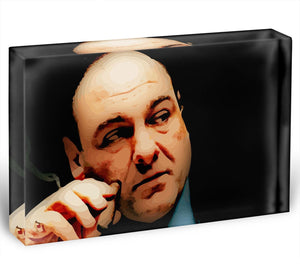 Tony Soprano Acrylic Block - Canvas Art Rocks - 1