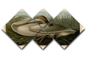 Trumpeter_Swan by Audubon 4 Square Multi Panel Canvas - Canvas Art Rocks - 1