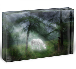 Unicorn in a magical forest Acrylic Block - Canvas Art Rocks - 1