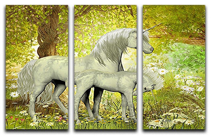 Unicorns and White Daisies 3 Split Panel Canvas Print