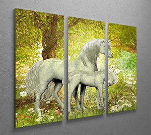 Unicorns and White Daisies 3 Split Panel Canvas Print - Canvas Art Rocks - 2
