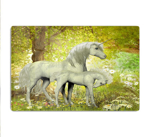 Unicorns and White Daisies HD Metal Print
