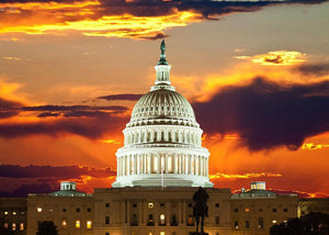 United States Capitol Building Wall Mural Wallpaper - Canvas Art Rocks - 1