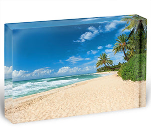 Untouched sandy beach with palms trees Acrylic Block - Canvas Art Rocks - 1