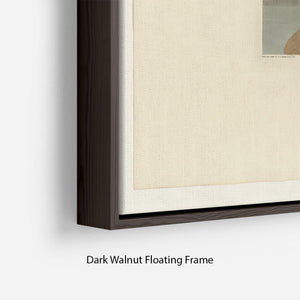 Wandering Shearwater by Audubon Floating Frame Canvas - Canvas Art Rocks - 6