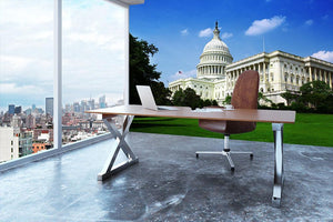 Washington DC Capitol from side Wall Mural Wallpaper - Canvas Art Rocks - 3