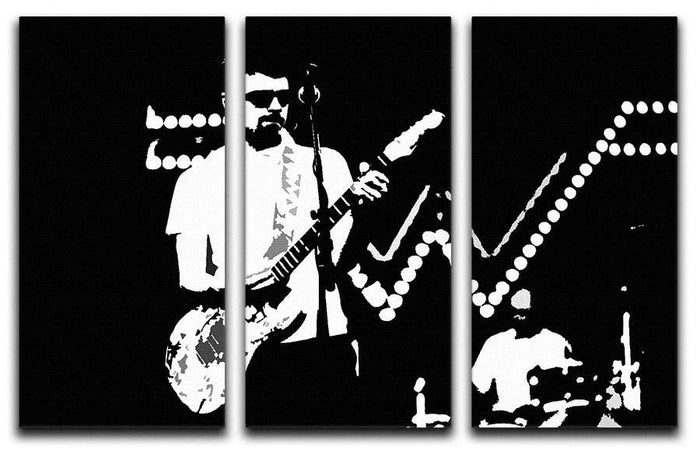 Weezer 3 Split Panel Canvas Print