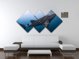Whale Shark very near 4 Square Multi Panel Canvas  - Canvas Art Rocks - 3