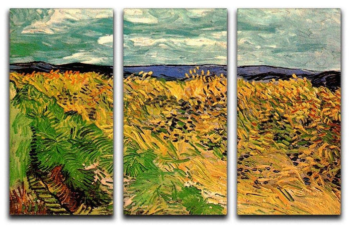 Wheat Field with Cornflowers by Van Gogh 3 Split Panel Canvas Print