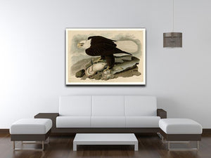 White headed Eagle by Audubon Canvas Print or Poster - Canvas Art Rocks - 4