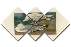 White winged silvery Gull by Audubon 4 Square Multi Panel Canvas - Canvas Art Rocks - 1