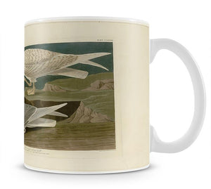 White winged silvery Gull by Audubon Mug - Canvas Art Rocks - 1