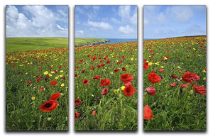 Wild Flower Meadow 3 Split Panel Canvas Print - Canvas Art Rocks - 1