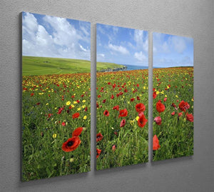 Wild Flower Meadow 3 Split Panel Canvas Print - Canvas Art Rocks - 2