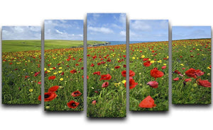 Wild Flower Meadow 5 Split Panel Canvas - Canvas Art Rocks - 1