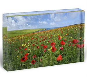 Wild Flower Meadow Acrylic Block - Canvas Art Rocks - 1