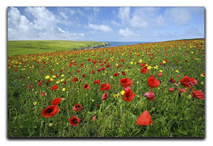 Wild Flower Meadow Canvas Print or Poster - Canvas Art Rocks - 1