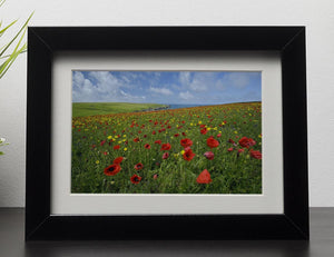 Wild Flower Meadow Framed Print - Canvas Art Rocks - 1