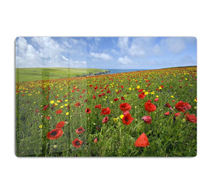 Wild Flower Meadow HD Metal Print - Canvas Art Rocks - 1