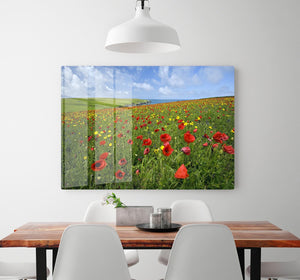 Wild Flower Meadow HD Metal Print - Canvas Art Rocks - 2