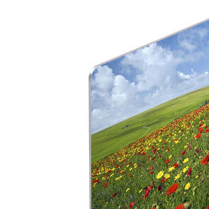 Wild Flower Meadow HD Metal Print - Canvas Art Rocks - 4