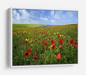 Wild Flower Meadow HD Metal Print - Canvas Art Rocks - 7