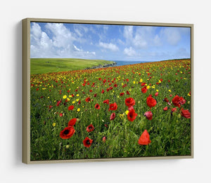 Wild Flower Meadow HD Metal Print - Canvas Art Rocks - 8