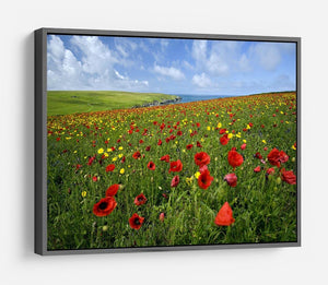 Wild Flower Meadow HD Metal Print - Canvas Art Rocks - 9