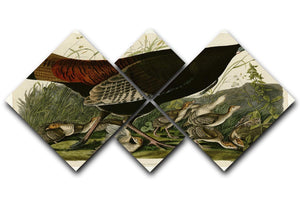 Wild Turkey 2 by Audubon 4 Square Multi Panel Canvas - Canvas Art Rocks - 1