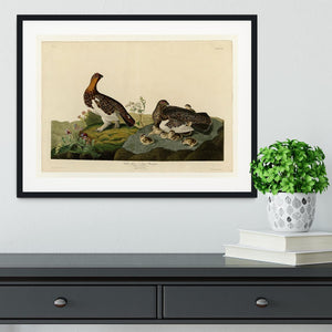 Willow Grouse by Audubon Framed Print - Canvas Art Rocks - 1