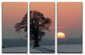 Winter Sunset 3 Split Panel Canvas Print - Canvas Art Rocks - 1