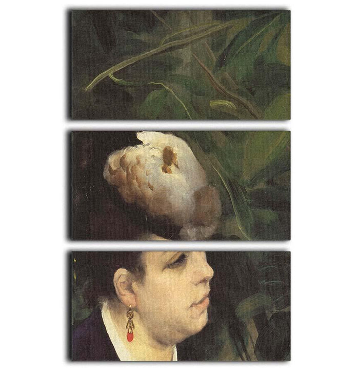 Woman with gull feathe Detail by Renoir 3 Split Panel Canvas Print