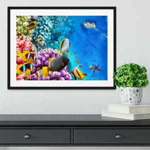 World with corals and tropical fish Framed Print - Canvas Art Rocks - 1