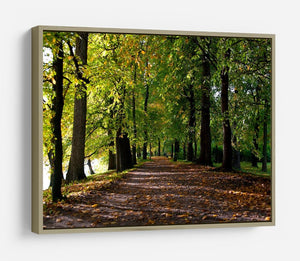 autumn road with leaves in park HD Metal Print