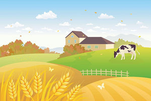beautiful fall countryside scene with a grazing cow Wall Mural Wallpaper - Canvas Art Rocks - 1