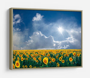 big sunflowers field and blue sky HD Metal Print