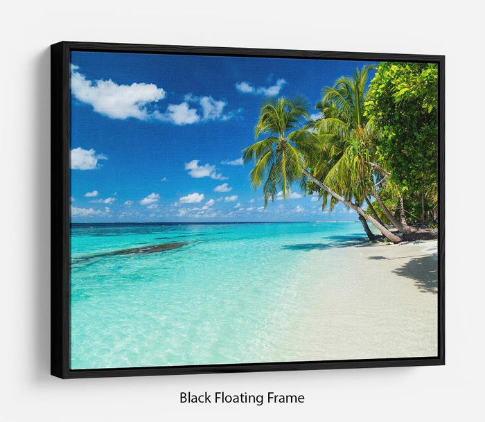 coco palms on paradise beach Floating Frame Canvas