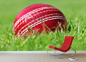 cricket ball on the grass Wall Mural Wallpaper - Canvas Art Rocks - 2