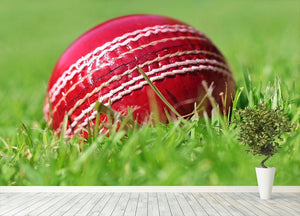 cricket ball on the grass Wall Mural Wallpaper - Canvas Art Rocks - 4