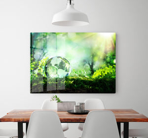crystal globe on moss in a forest HD Metal Print