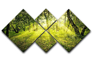 deep forest on summer morning 4 Square Multi Panel Canvas  - Canvas Art Rocks - 1
