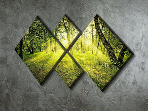 deep forest on summer morning 4 Square Multi Panel Canvas  - Canvas Art Rocks - 2