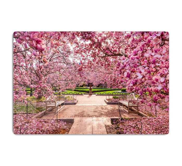 spring foliage near the National Mall HD Metal Print