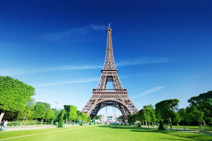 sunny morning and Eiffel Tower Wall Mural Wallpaper - Canvas Art Rocks - 1
