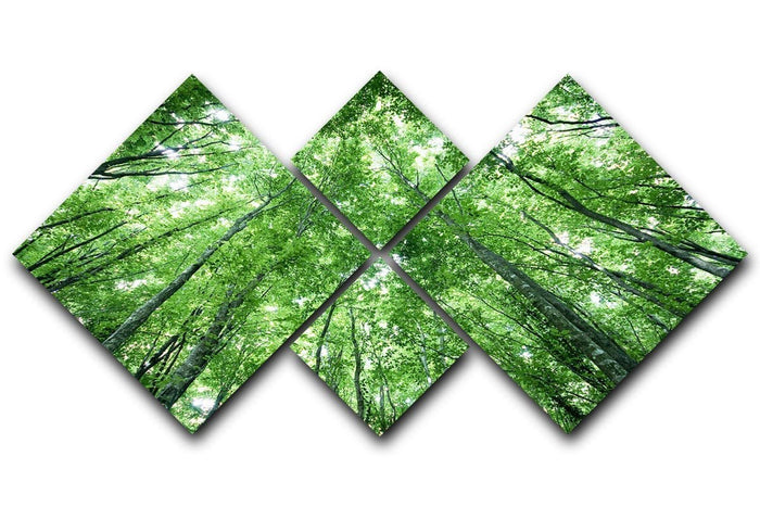 trees meeting eachother at the sky 4 Square Multi Panel Canvas