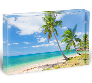 tropical beach with coconut palm Acrylic Block - Canvas Art Rocks - 1