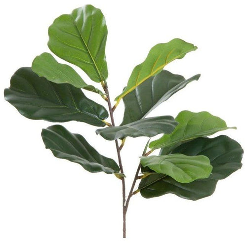 Flora Fiddle Leaf - Maison De Luxe French Interiors