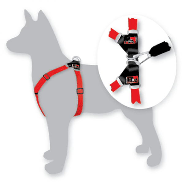 Black Dog Car Harness Medium